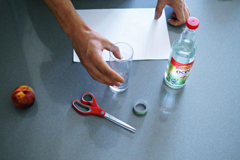 jak zrobić pułapkę na muszki owocówki